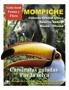 Jungle Tours Mompiche - The Mudhouse Hostel